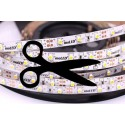 24 Volts LED strip